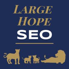 Large Hope SEO